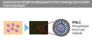Доставка питательных веществ эссенцией фейм атоми